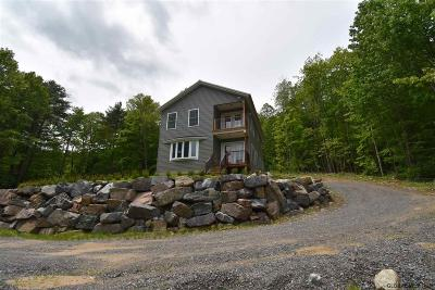 Lake George Single Family Home For Sale: 1695 Bay Rd