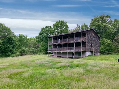Greene County Single Family Home For Sale: 2891 Route 67