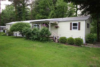Ballston Spa Single Family Home For Sale: 17 Collamer Av