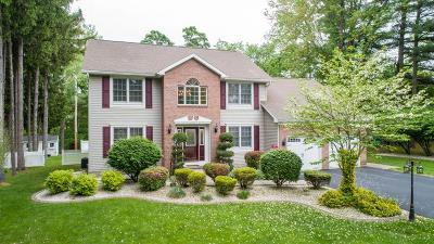 Niskayuna Single Family Home For Sale: 1004 Merlin Dr
