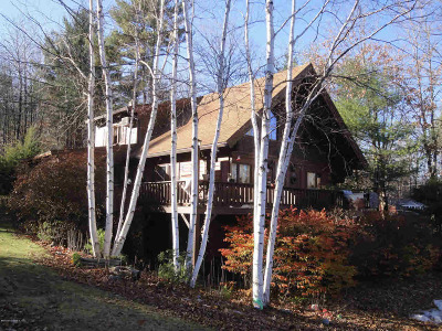 Schroon Single Family Home For Sale: 22 Berry Hill Way