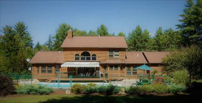 Albany County, Saratoga County, Schenectady County, Warren County, Washington County Single Family Home For Sale: 223 Smith Mountain Rd