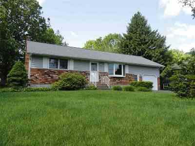 Rotterdam Single Family Home For Sale: 617 Alexander Dr