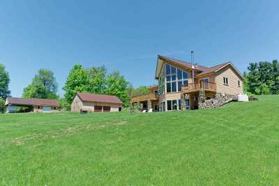 Schoharie County Single Family Home For Sale: 244 Knox Rd