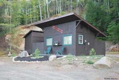 Johnsburg Single Family Home For Sale: 371 Main St