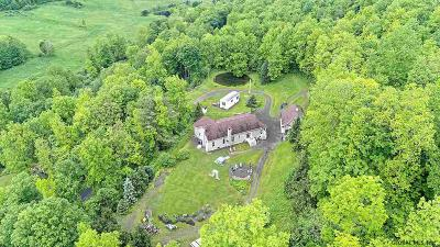 Schoharie County Single Family Home For Sale: 679 Westkill Rd