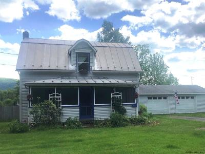 Schoharie County Single Family Home For Sale: 3950 State Rt 30