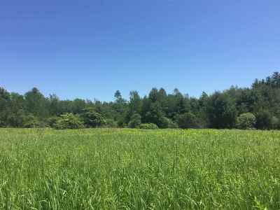 Queensbury Residential Lots & Land For Sale: Lot 1 Ridge Rd