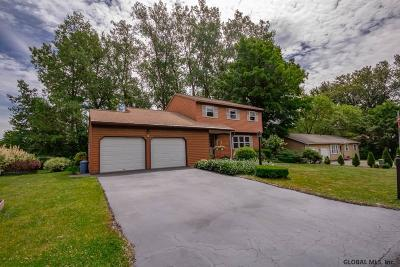 Colonie Single Family Home For Sale: 3 Skyline Dr