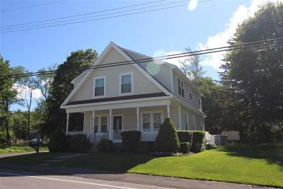 Bethlehem Single Family Home For Sale: 555 South Albany Rd