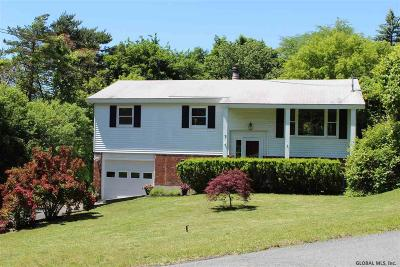 East Greenbush Single Family Home For Sale: 7 Horizon View Dr West