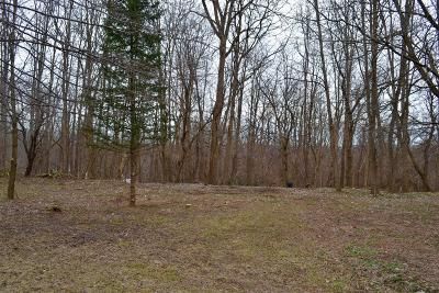 Mohawk Tov NY Residential Lots & Land For Sale: $25,000