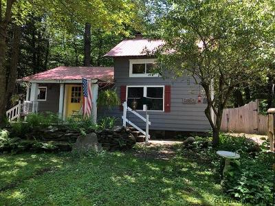 Saratoga County Single Family Home For Sale: 113 Crooked Tr