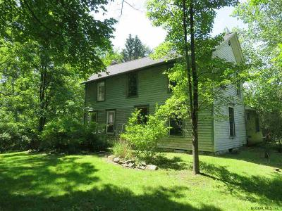 Columbia County Single Family Home New: 229 State Route 295