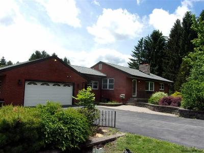 Albany County, Columbia County, Greene County, Fulton County, Montgomery County, Rensselaer County, Saratoga County, Schenectady County, Schoharie County, Warren County, Washington County Single Family Home New: 10 Snake Hill Rd