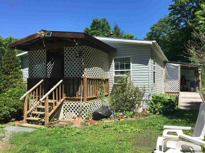 Albany County, Columbia County, Greene County, Fulton County, Montgomery County, Rensselaer County, Saratoga County, Schenectady County, Schoharie County, Warren County, Washington County Single Family Home New: 3250 County Route 21