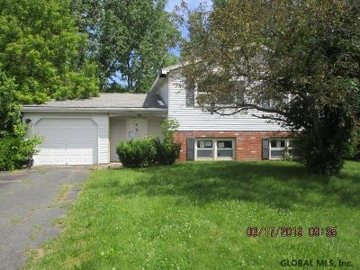 Cohoes Single Family Home For Sale: 5 Pike Creek Dr