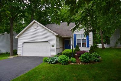 Saratoga Springs Single Family Home New: 21 Cassidy Dr