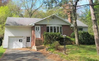 Guilderland Single Family Home For Sale: 101 Birchwood Dr