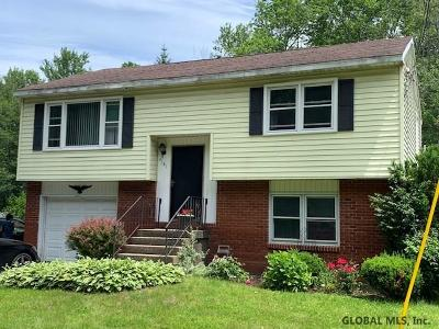 Colonie Single Family Home For Sale: 4141 Albany St