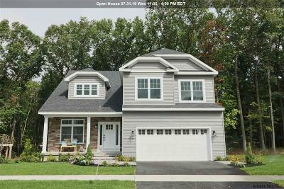 Saratoga County Single Family Home For Sale: 191 Pamela La
