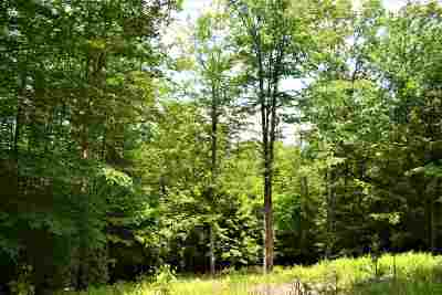 Lake George Residential Lots & Land For Sale: 9 Spring Woods Rd