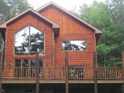 Saratoga County, Warren County Single Family Home For Sale: 178 S Shore Rd