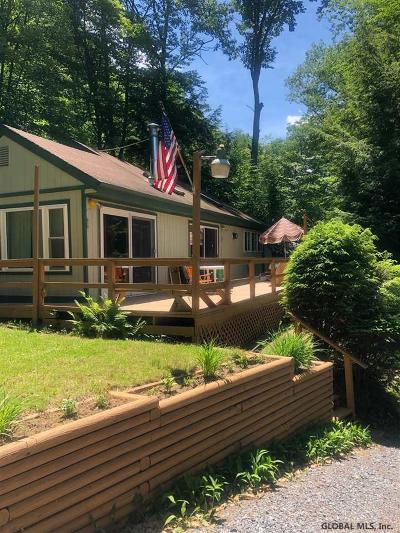 Lake Luzerne Single Family Home For Sale: 766 East River Dr