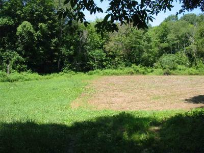 Washington County Residential Lots & Land For Sale: Washington County Route 153
