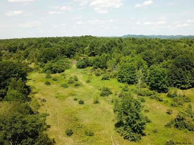 Washington County Residential Lots & Land For Sale: 424 & 444 Pleasant Valley Rd