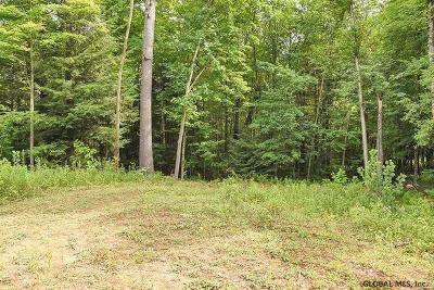 Saratoga County Residential Lots & Land For Sale: 4551 Nys Route 9n