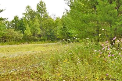 Saratoga County Residential Lots & Land For Sale: 4555 Nys Route 9n