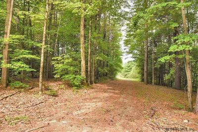 Saratoga County Residential Lots & Land For Sale: 4559 Nys Route 9n