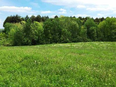 Saratoga County Residential Lots & Land For Sale: 2119 Route 67