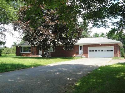 Greene County Single Family Home For Sale: 11595 Route 32
