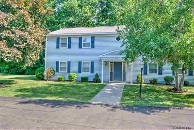 Colonie Single Family Home New: 163 Cedarview La