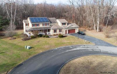 Guilderland Single Family Home New: 2004 Tina Ct
