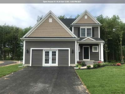 Colonie Single Family Home For Sale: 15 Hillard Ln