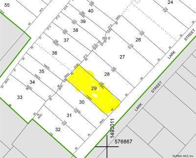 Amsterdam Residential Lots & Land For Sale: 32 Lark St