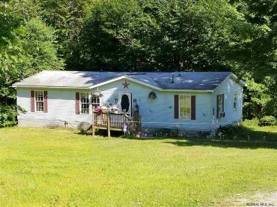 Saratoga County Single Family Home New: 376 Leroux Rd
