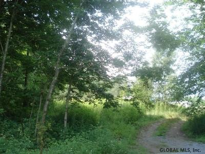 Washington County Residential Lots & Land New: 43 County Route 31