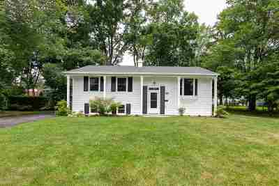 Albany County Single Family Home New: 41 Montrose Dr