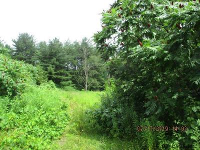 Saratoga County Residential Lots & Land New: 718 Swaggertown Rd