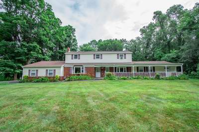 Saratoga County Single Family Home New: 195 Wood Dale Dr