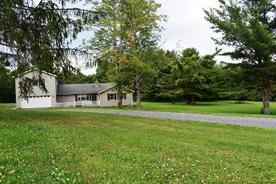 Rensselaer Single Family Home For Sale: 56 County Route 10