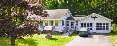 Moreau Single Family Home For Sale: 368 Reynolds Rd