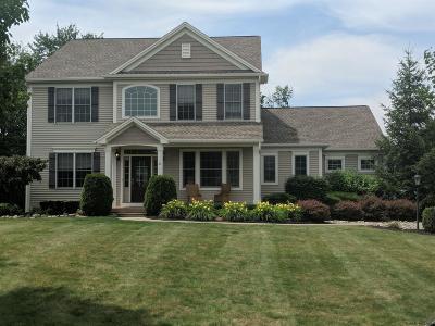 Mechanicville, Stillwater Single Family Home For Sale: 23 Hidden Farm La