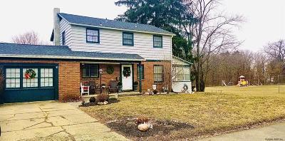 Rensselaer Single Family Home For Sale: 99 Lakeview Av