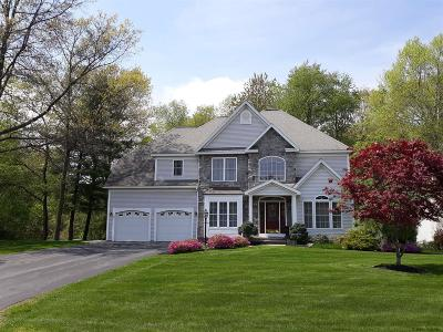 Clifton Park Single Family Home For Sale: 2 Cathywood Ct