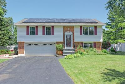 Cohoes Single Family Home For Sale: 6 Pike Creek Dr